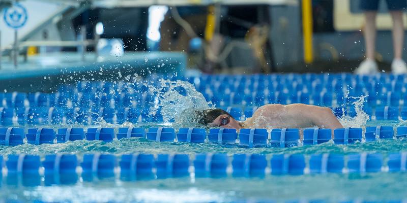 2018_KSMetz_Feb17_SHS Swimming_ State Finals_NIKON D5_5590.jpg