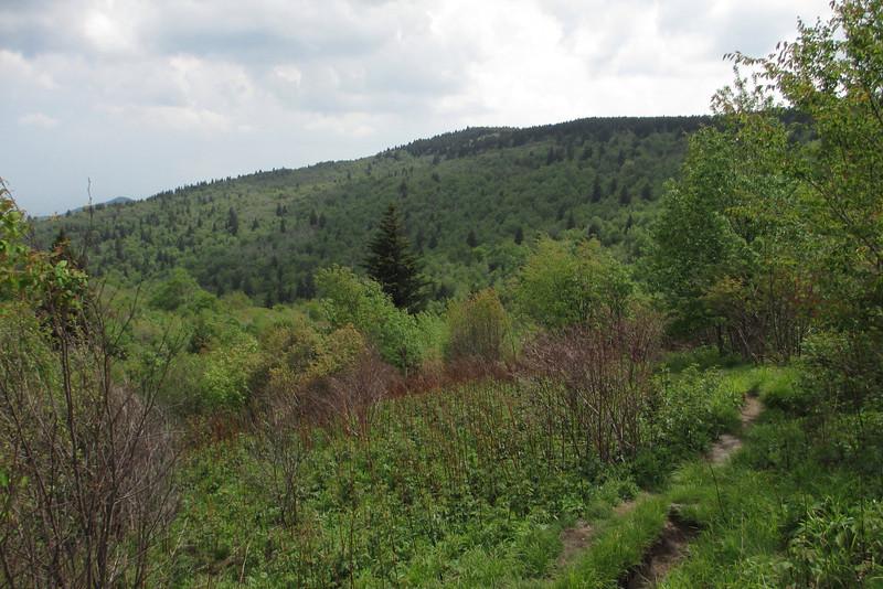 Mountains-to-Sea Trail (5,700')