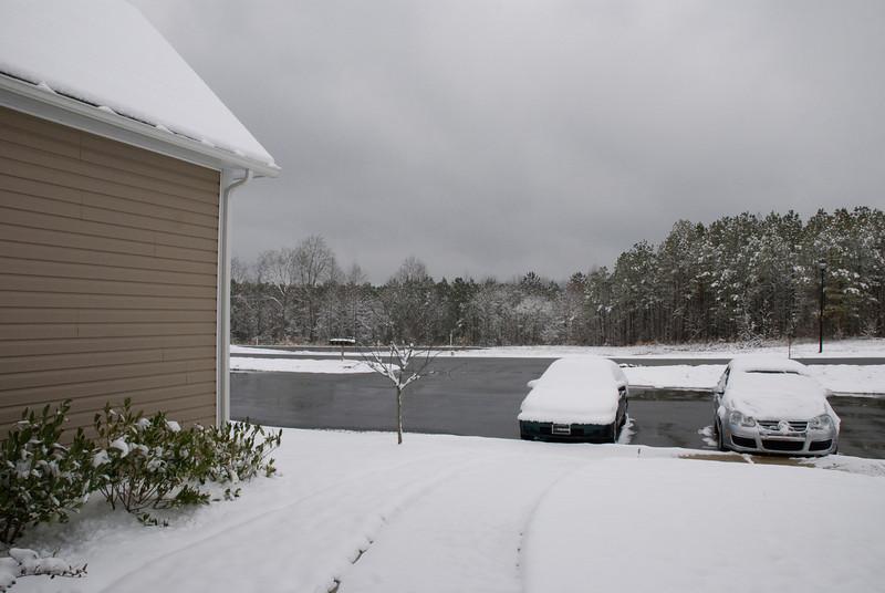 SnowFeb13-6.jpg