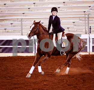 2013 October, IEA Horse Show Chicopee