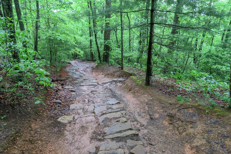 Ingles Field Gap Trail -- 2,450'