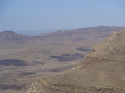 Zin Desert 16
