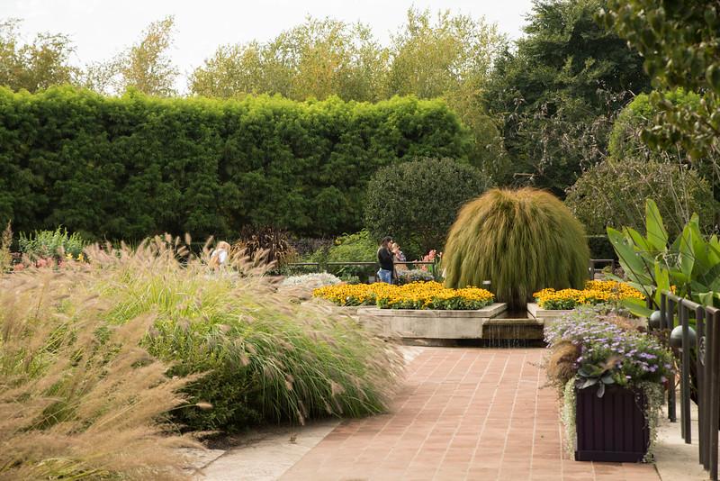Chicago Botanic Garden 063.jpg