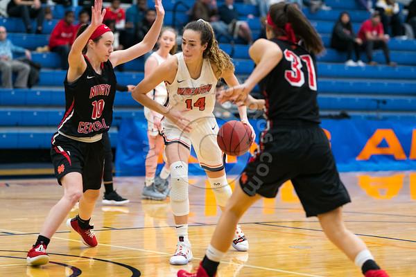Wheaton College Women's Basketball vs North Central, December 15, 2018