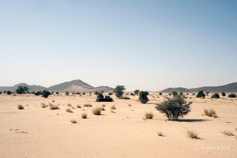 2-3-17229024Meroe-Bayuda Desert-Karima.jpg
