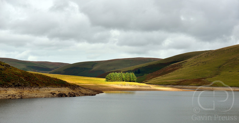 Elan_Valley_Trees.jpg