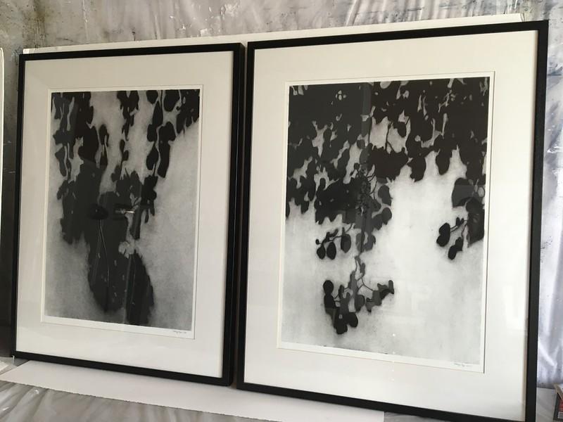 Shadow Leaves #6 & #5 SALE $2,000. ea ON HOLD