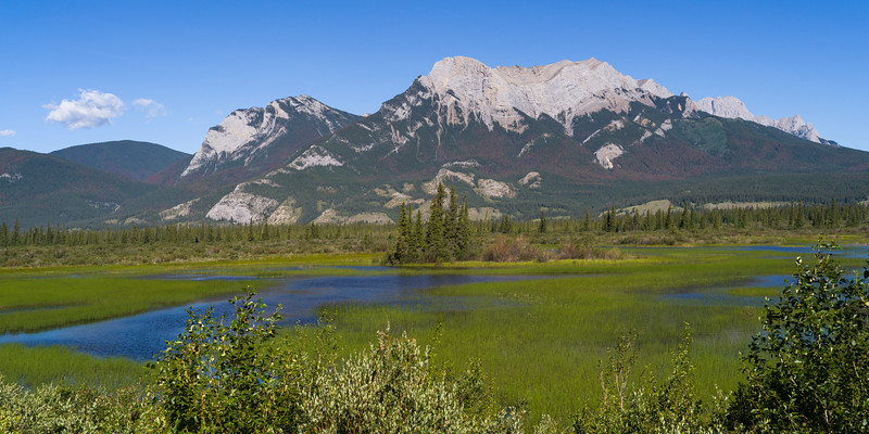 Landscape with snowcapped mountains in the background, Improvement District 12, Yellowhead Highway, Jasper National Park, Jasper, Alberta, Canada