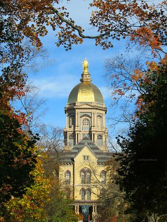 Notre Dame Favs 2010
