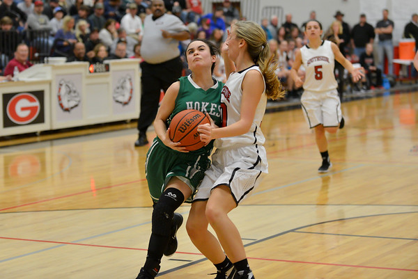 Hokes Bluff Lady Eagles v. Southside, January 23, 2016