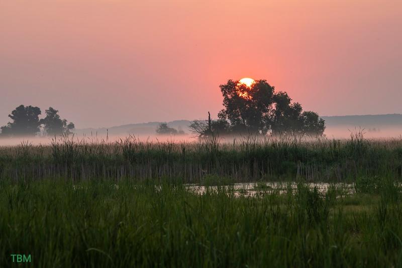 horicon sunrise 20210720.jpg