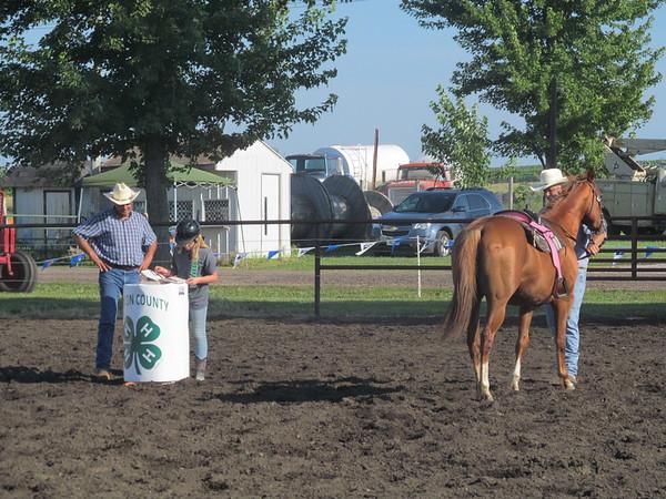 2015 Benton County Fair Horse Show