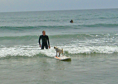 Triple J Ranch Surfin'Dog Camp Rincon 8_20_06