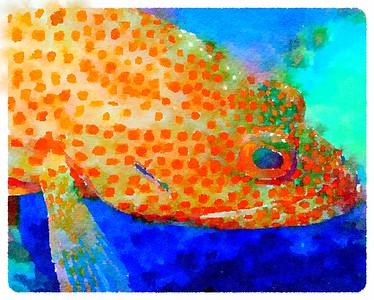 Underwater Watercolor