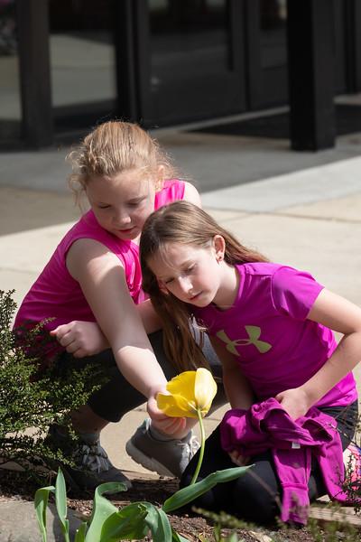 20180421 110 Girl Scouts Outdoor Art and Explorer.jpg