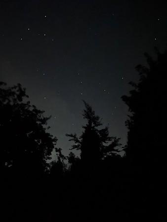 The night sky 2021