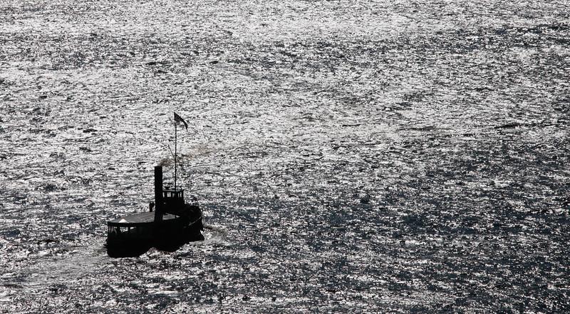 Dampfschiff auf der Elbe in Hamburg im Sonnenschein