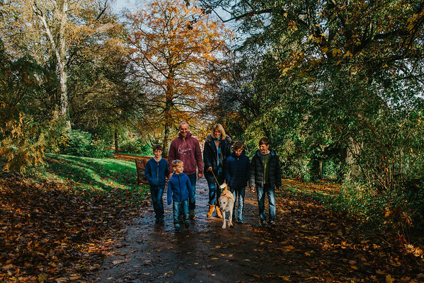 Little Dog Family
