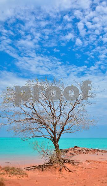 broome beaches 1a.jpg