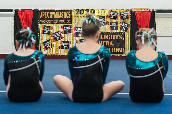 3-7-2020 Apex Lights Camera Action Gymnastics Meet  Xcel Bronze-Silver
