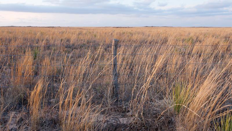 Sunset At Lesser Prairie Chicken Preserve