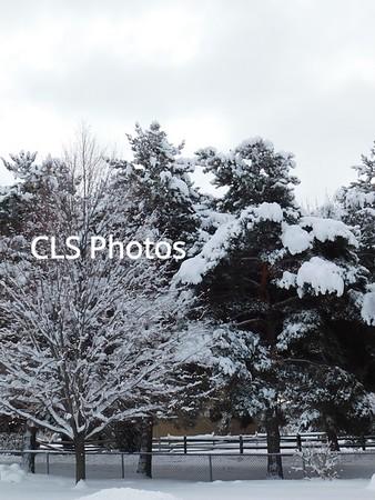 2017 winter scenes