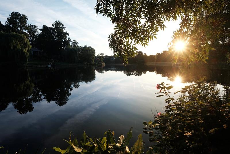 Lake Newport summer sunrise