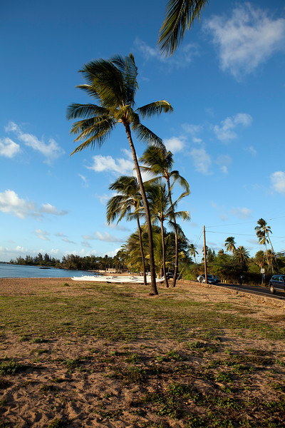 A trip to Sunset Beach - Hawaii