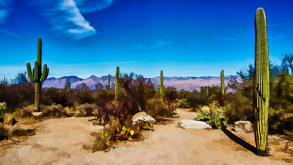 Visions of Arizona - Digital Transformations