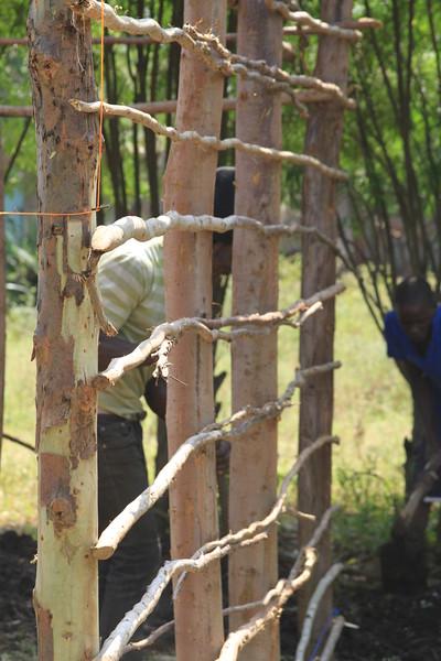 Kenya Part1 '15 632.JPG