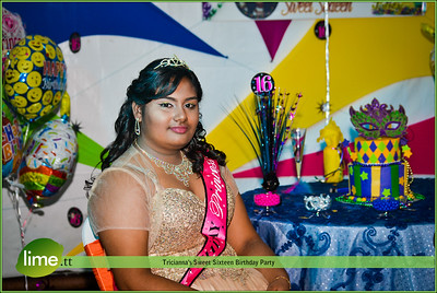Tricianna's Sweet Sixteen Birthday Party