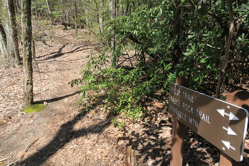 Ridge-Mill Creek Pass Trail Juntion - 2,860'