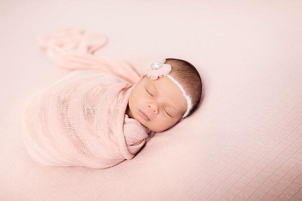 Pink Blanket Fade