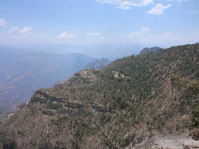 Copper Canyon June 2013