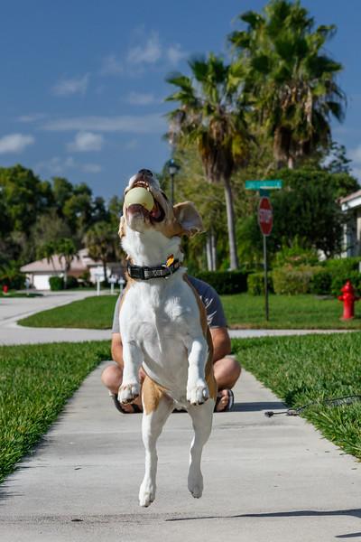 Brody Catch Sequence-3.jpg