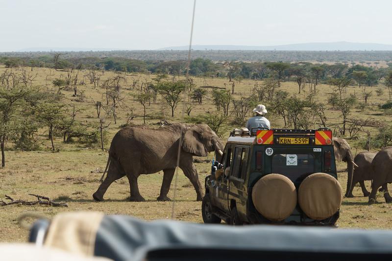 Kenya 2015-09972.jpg