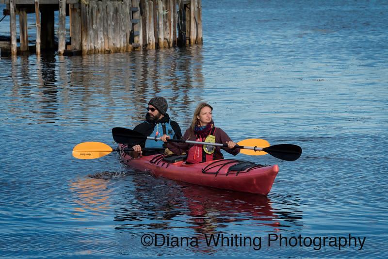 Kayaking Blue Rocks Nova Scotia