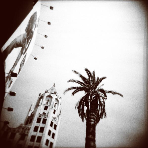 Billboard, Building & Palm