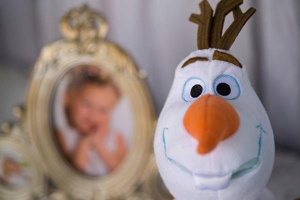 Caroline Kavaky's 6th Frozen Wonderland Party