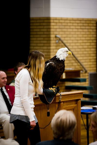 martin eagle-29.jpg