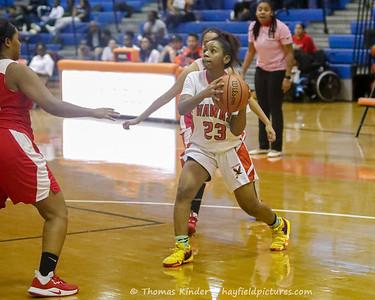 Girls JV Basketball v Annandale 1/14/20