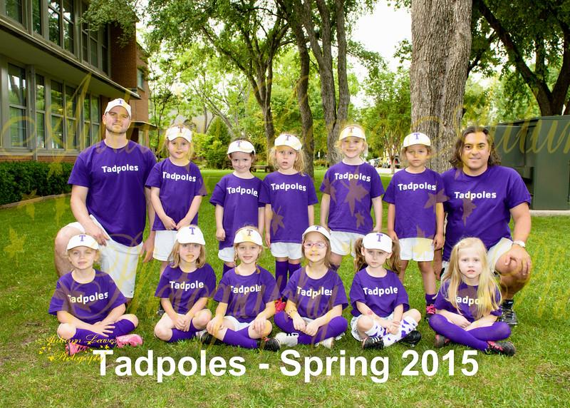 Tadpoles - KG