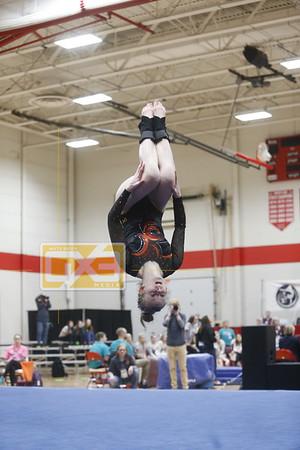 State gymnastics (rd 1, 2) GYM1920