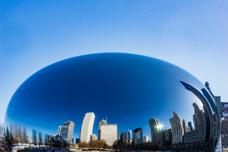 Winter Blues Day Bean - March 5, 2015