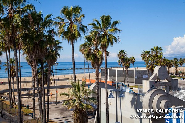 Venice Beach Fun 2