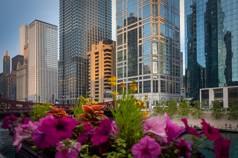 June 20 - Dusk along the Chicago River.jpg