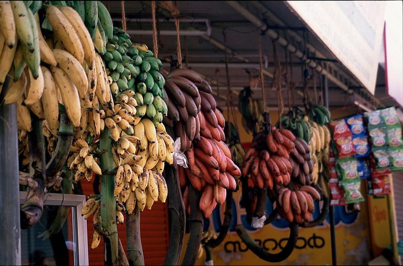 India2_050.jpg