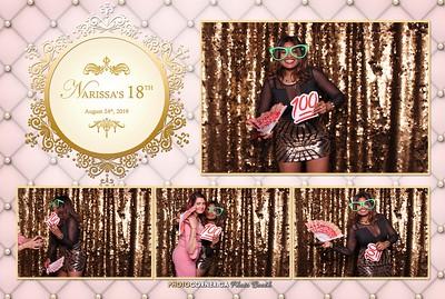 Narissa's 18th Birthday - 08-24-2019