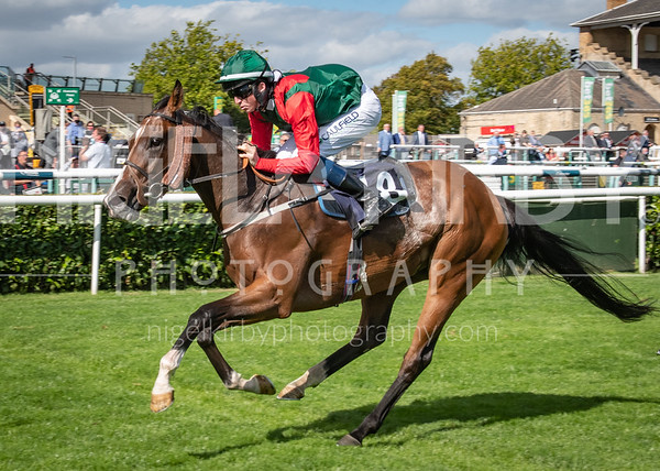 Doncaster Races - Wed 09 Sept 2020