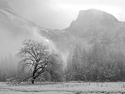 Yosemite & San Francisco